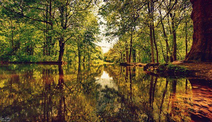 Autumn Landscape UK
